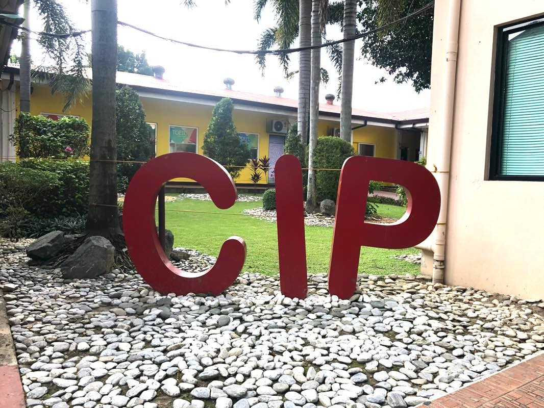 CIPの校舎